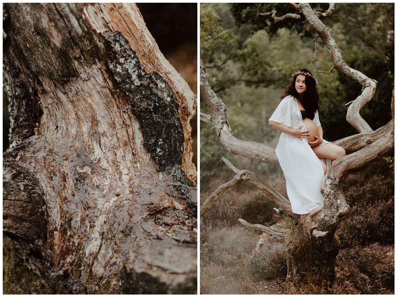 seance-maternité-nature-femme-enceinte-arbre-fumée-détail-tronc