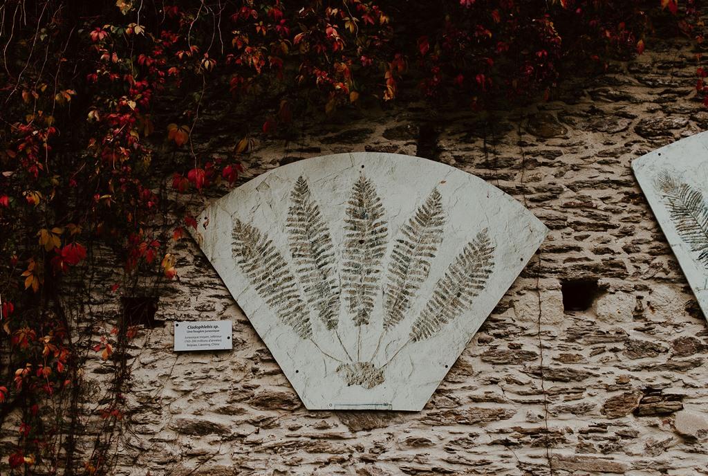 séance couple ambiance botanique serre jardin des plantes Nantes