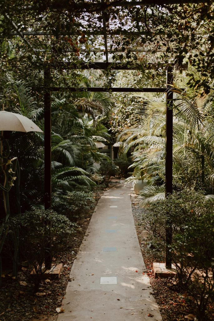 entrée centre yoga plantes palmiers