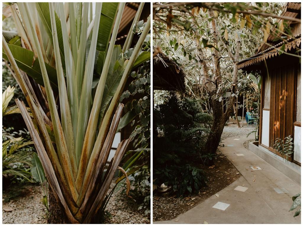 lieu Blue Indigo centre yoga nature Cambodge Siemp Reap
