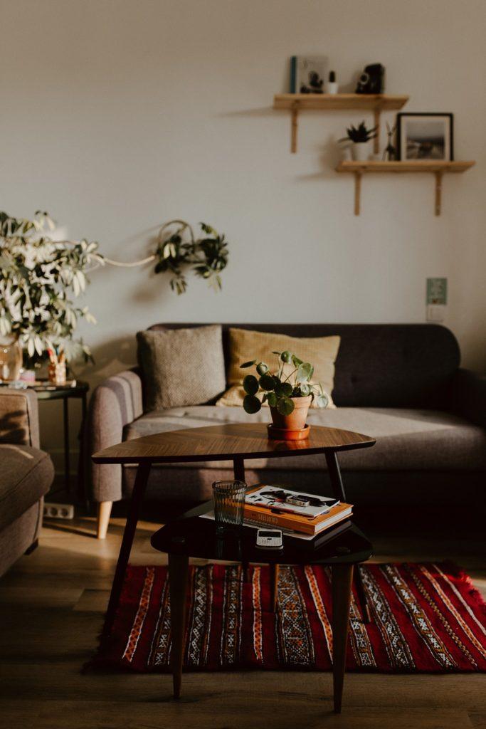 photo salon appartement canapé table basse plantes