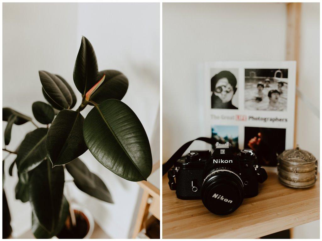décoration maison plante appareil photo